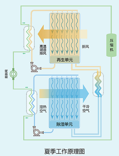 Heat pump drive type constant temperature and humidity of central